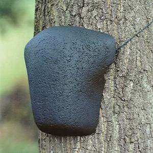 Nisthilfe für Baumläufer